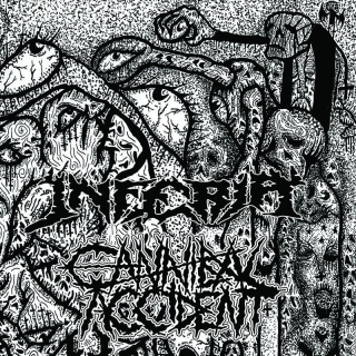 CANNIBAL ACCIDENT Split s Inferia (7'' vinyl)